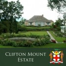 "Jamaica Blue Mountain ""Clifton Mount Estate"""