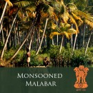 "India ""Monsooned Malabar"" Coffee"