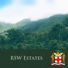 "Jamaica Blue Mountain ""RSW Estates"""